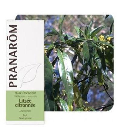 Picture of PRANAROM LICEA LITSEA
